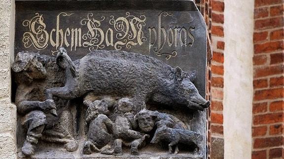 Mittelalterliche Judensau, ein Schmäh- und Spottbild an der Stadtkirche St. Marien in Wittenberg