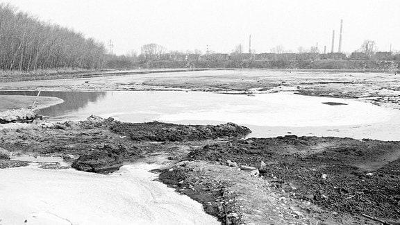 Der sogenannte Silbersee, eine Industriekloake in Bitterfeld, 1990