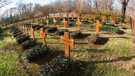 Kriegsgräberfriedhof Göda Zahlreiche Kreuze stehen auf dem Friedhof für gefallene Soldaten im zweiten Weltkrieg in Göda bei Bautzen.