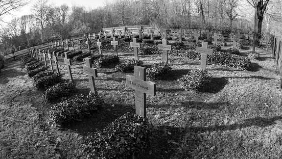 Zahlreiche Kreuze stehen auf dem Friedhof für gefallene Soldaten im zweiten Weltkrieg, in Göda bei Bautzen.