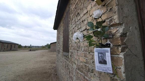 Steinbaracken im Sowjetischen Speziallager Nr. 7/ Nr.1 in der Gedenkstätte und Museum KZ Sachsenhausen