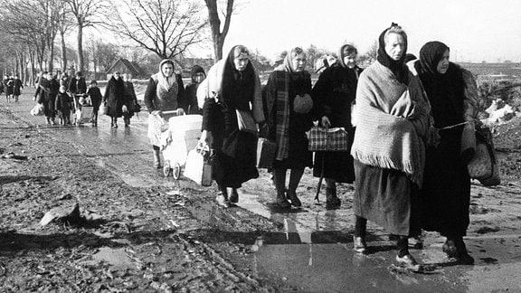 Flüchtlinge im Mai 1945 in Deutschland