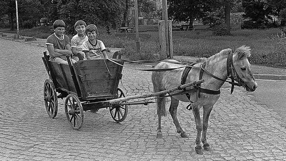 Drei Personen sitzen in einer kleinen Kutsche.