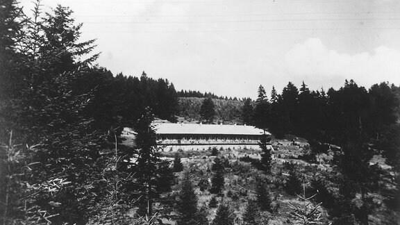 Eine längliches Gebäude im Wald.