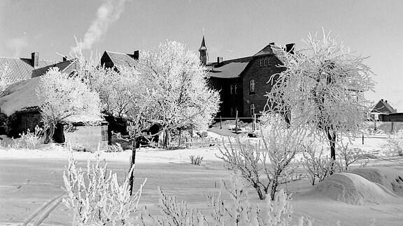Eine Winterlandschaft mit Häusern und Bäumen.