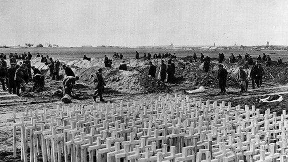 Einwohner von Gardelegen heben Gräber für Opfer von Isenschnibbe-Massaker aus.