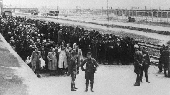 Neu angekommene Häftlinge haben auf der Todesrampe im KZ Auschwitz Aufstellung genommen. Links Frauen und Kinder, rechts die Männer