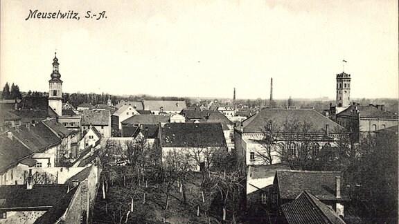 Meuselwitz Altenburger Land, Teilansicht des Ortes