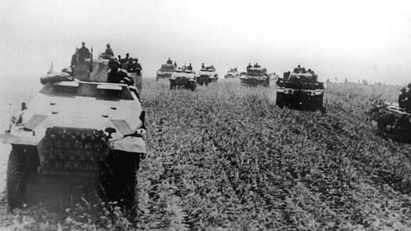 Schützenpanzer und Panzer IV der Wehrmacht Ostfront Juli, 1943