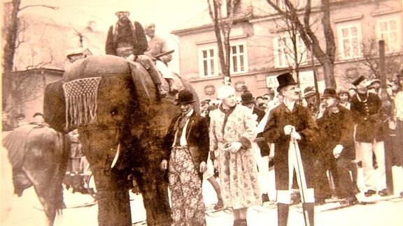 Faschingsumzug mit einem Elefant.