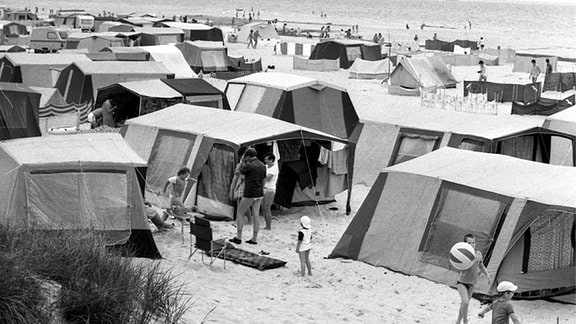 Zelte auf dem kilometerlangen Zeltplatz im Ostseebad Prerow auf dem Darß.