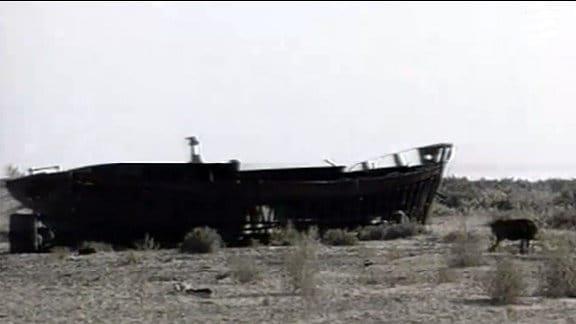 Der Aralsee - das verlorene Meer
