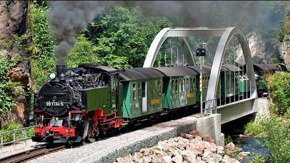 Weißeritztalbahn überquert eine Brücke