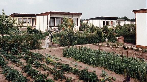Blick auf eine Kleingartenanlage am Rande von Ost-Berlin.