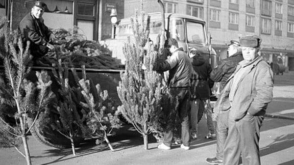 Männer beladen einen Laster mit Weihnachtsbäumen in den 80-er Jahren in Leipzig