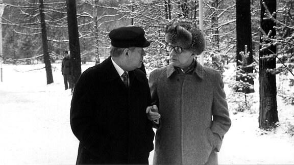 Bundeskanzler Helmut Schmidt und Erich Honecker