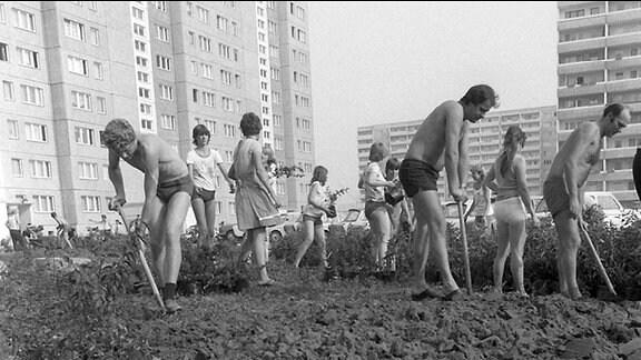 Bewohner der Bärensteinstraße im Ostberliner Neubaugebiet Marzahn sind am 07.08.1982 damit beschäftigt, vor ihren Häusern Grünflächen anzulegen und Sträucher und Bäume zu pflanzen.