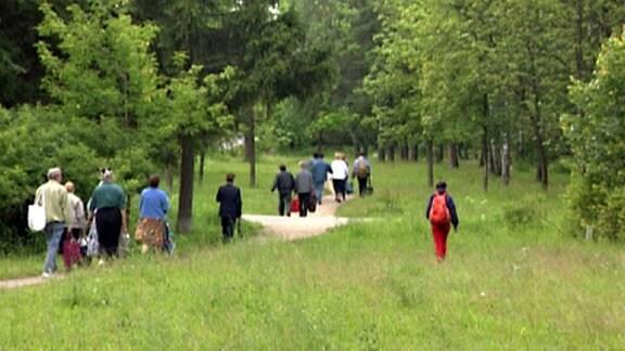 Menschen in Bürokleidung wandern durch einen Wald