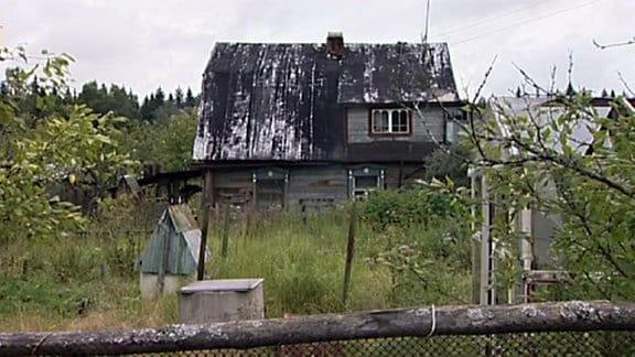 Blick in einen verwilderten Garten mit einem verwitterten Holzhäuschen