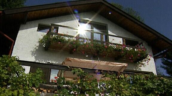 Sonne spiegelt sich in blumenumrankten Gartenhausfenster