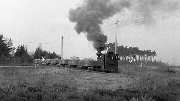Archivaufnahme einer Dampflock.