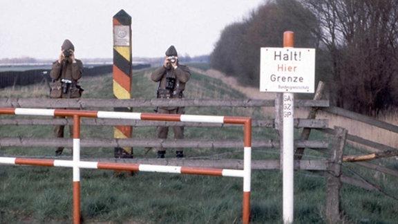 Elbedeich, bei Lauenburg 1984/2013