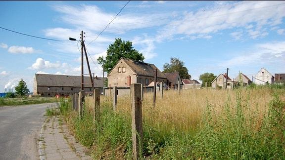 Verlassene Dorfstraße. Rechts eine blühende Wiese.