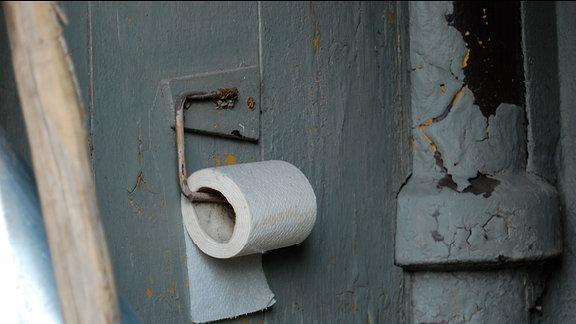 Blick in ein Klo. An einer Holzwand hängt eine Rolle Toilettenpapier.
