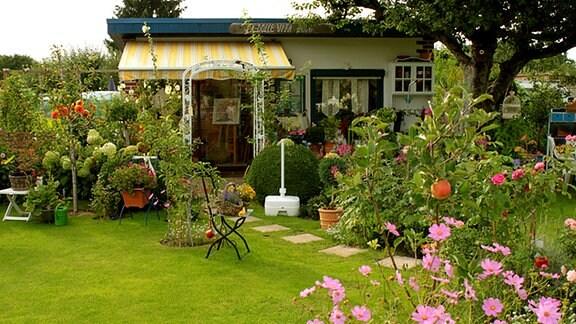 Blumenidylle im Kleingarten