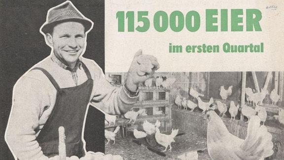 Tipps zur Erzielung hoher Legeleistungen, verfasst von der SED-Kreisleitung Schwerin-Land im Jahr 1963.