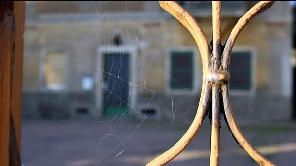 Sonne scheint auf ein Eingangstor, in dem ein Spinnennetz hängt.