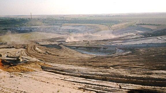 Blick ins Geiseltal vor der Rekultivierung: zerfurchte, verödete Erde