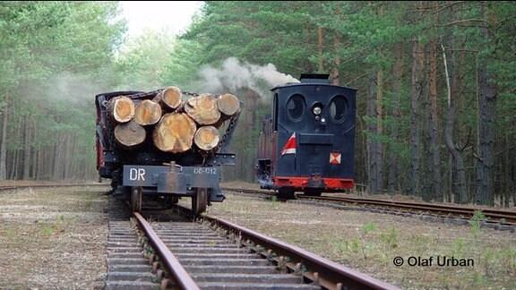 mit Baumstämmen beladene Schmalspurbahn