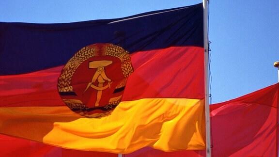 Fahnen der DDR mit dem Staatsenblem - Hammer und Zirkel im Ährenkranz - und rote Fahnen als Symbol der Arbeiterklasse