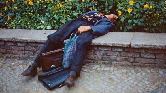 Ein Mann liegt betrunken in einem Blumenbeet